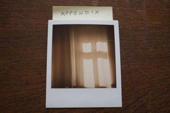 appendix 10